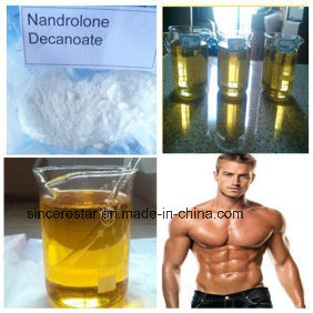 Muscle Building Steroid Nandrolone Decanoate / Deca