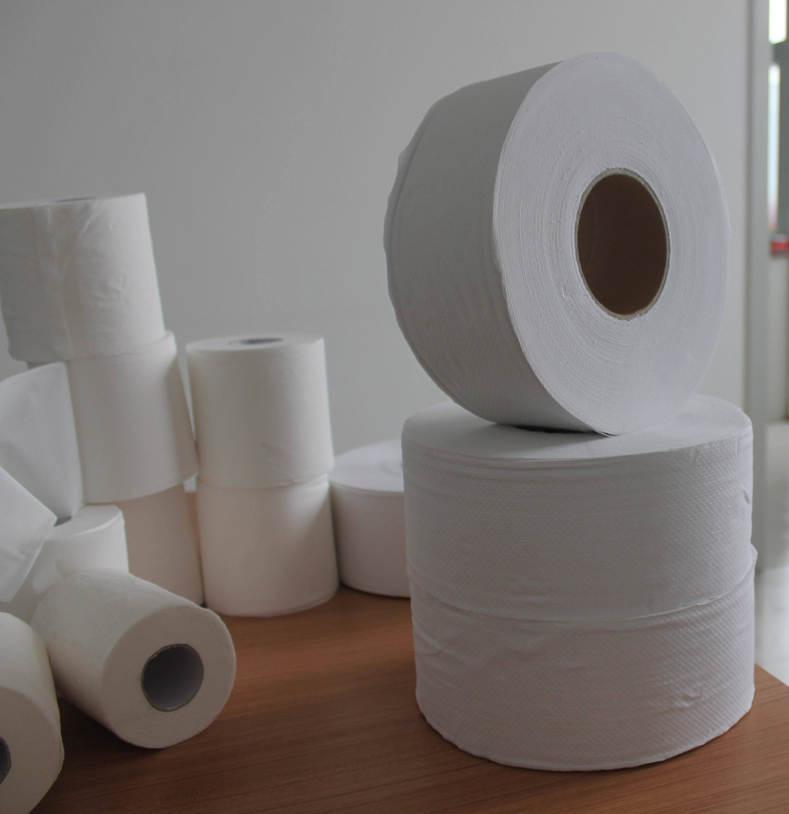 Toilet Paper and Mini Jumbo Roll Tissue for Commercial Use