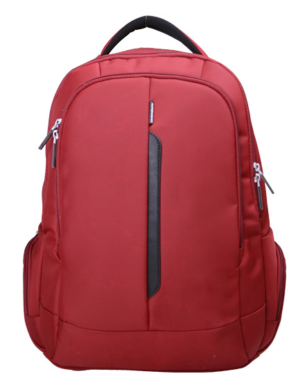 New Style Backpack for Laptop School Travel Hiking Use (SB2124)