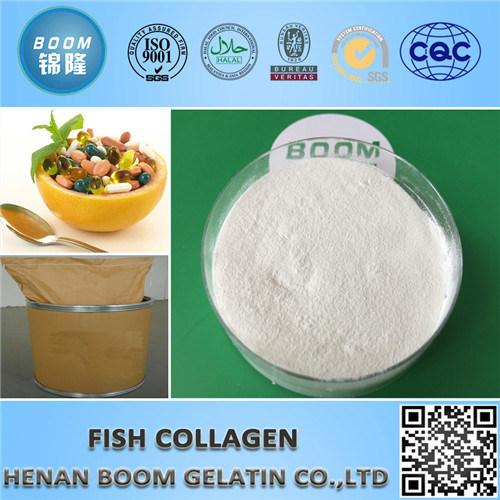 Food / Cosmetic Grade Fish Collagen