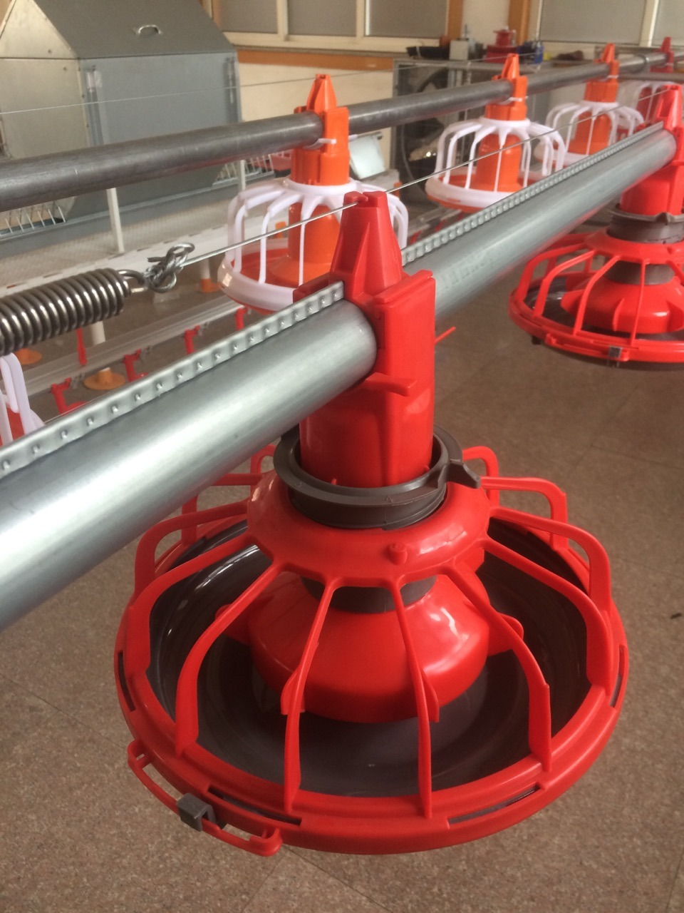 Automatic Poultry Farming Equipment for Broiler