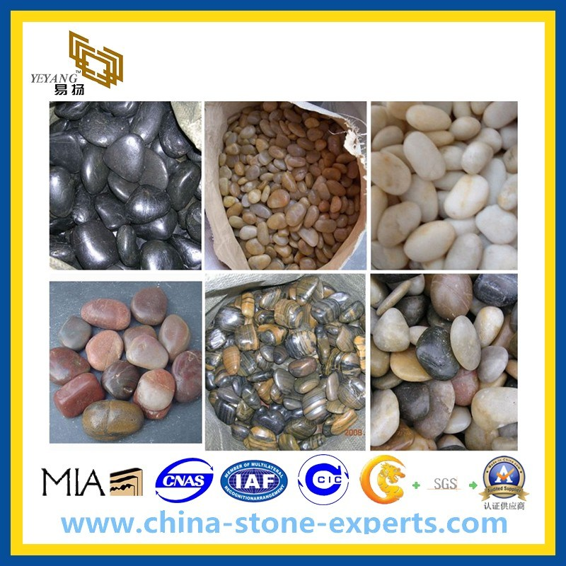 Outdoor Natural Mosaic Pebblestone for Paving Stone