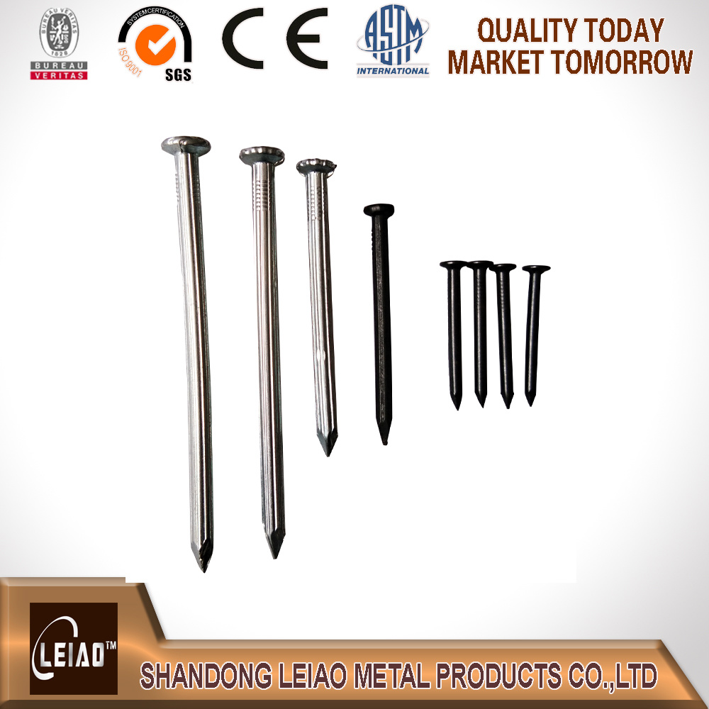 Galvanized Concrete Nail with Discount