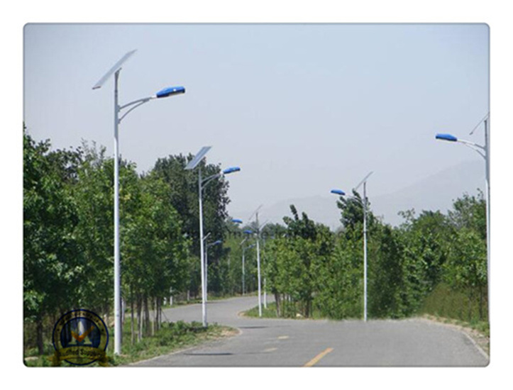 Factory Price 5m 30W Solar LED Street Light