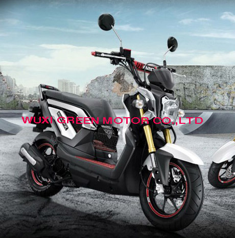 Motor Scooter, Gas Scooter, Scooter, Sport Motorcycle (ZOOMER)
