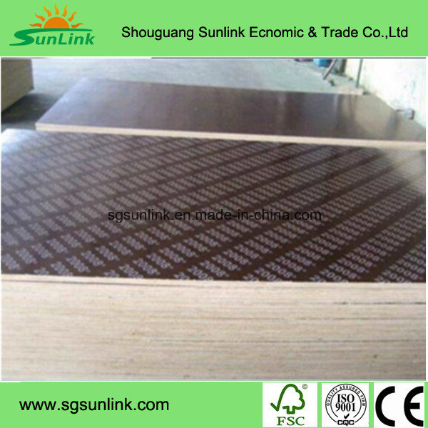 Concret Plywood/ Shuttering Plywood/ Construction Plywood