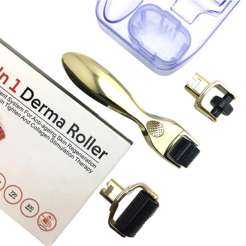 540 3 in 1 4 in 1 Microneedle Beauty Kit Ce Approved Derma Roller