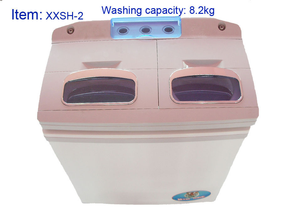 mold in washing machine health