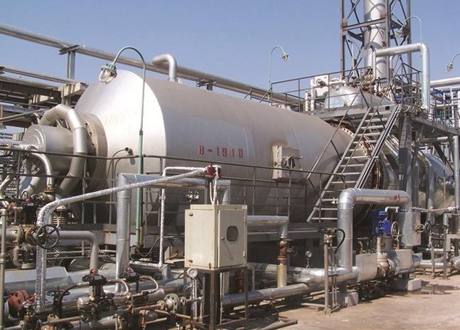 Petrochemical Incinerator