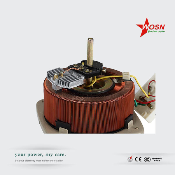 2kVA 110V to 0-250V Manual Contact Voltage Regulator Variac