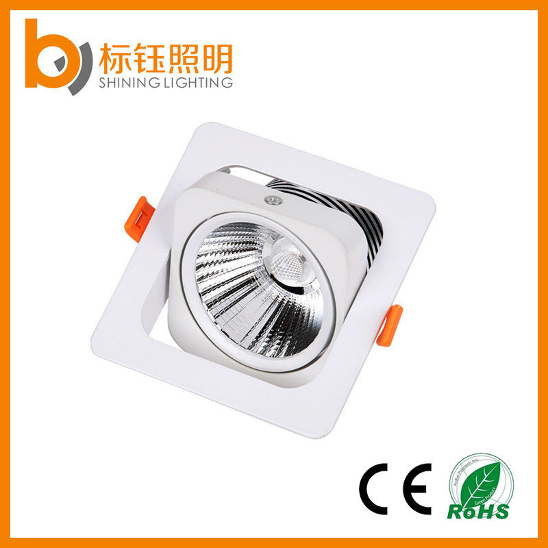 10W New Design Ceiling Lamp Sharp COB Chips LED Ceiling Down Light with Ce RoHS