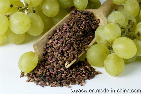 Natural Grape Seed Extract 95% OPC