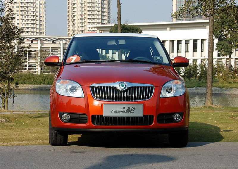 Auto Grille for Skoda Fabia From 2007 (5JD853668B)