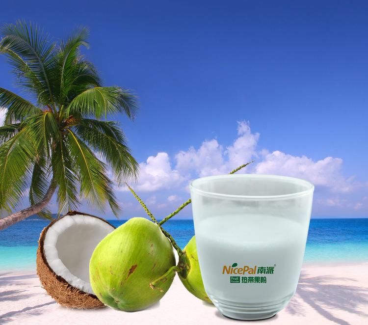 Natural Instant Coconut Juice Powder / Coconut Milk Powder