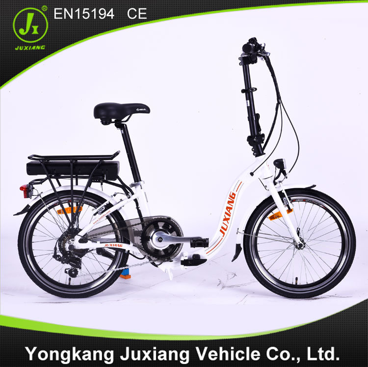 Classic Electric Folding Bike (TDN29Z)