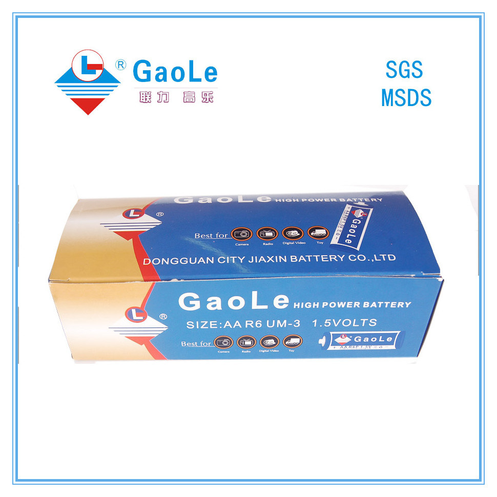 AA 1.5V Dry Cell Battery in Fashion Packing (R6P UM-3)