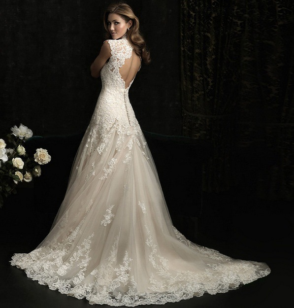 Lace Deep V Collar Fish Tail Exposed Bride Wedding Dress