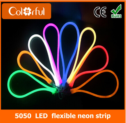 Waterproof SMD5050 RGB LED Flexible Neon Strip Light