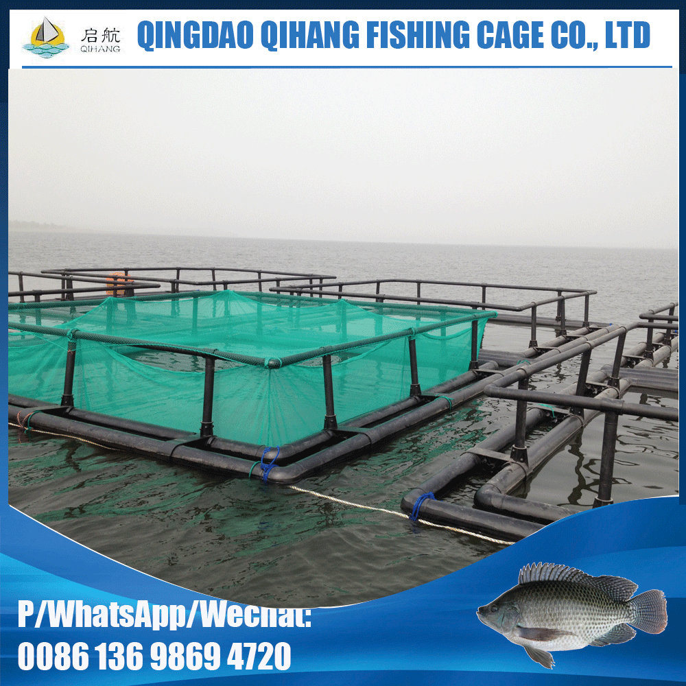 6m Square Fish Farming Cage for Kenya Pisciculture