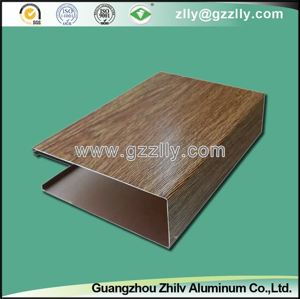 Aluminum False Ceiling for Outdoor