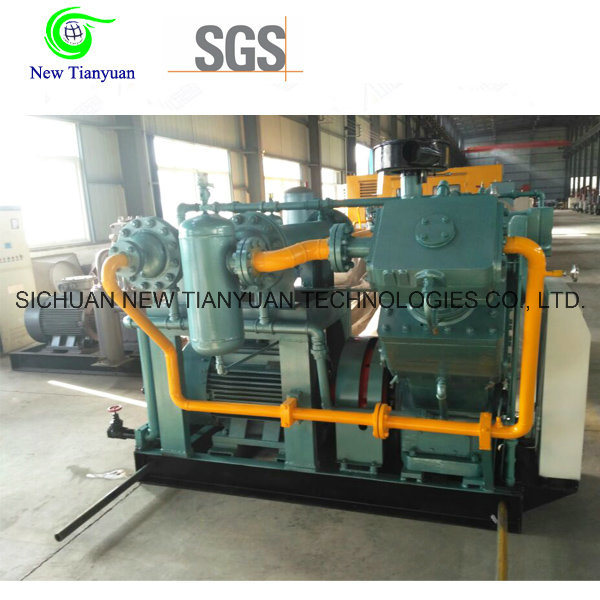 Small Occupation High Pressure CNG Gas Compressor