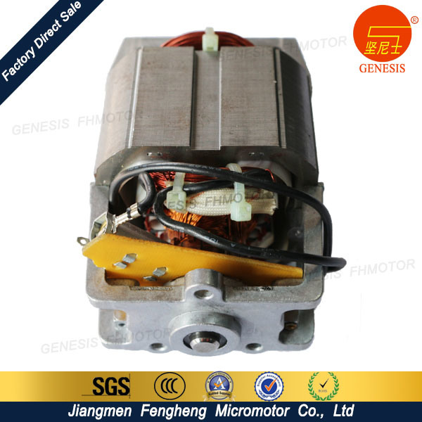 High Quality Home Appliances AC Motor