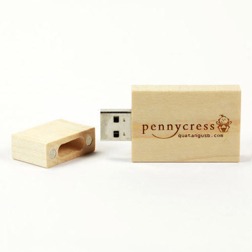 Eco USB Flash Drive Eco Wooden USB Stick Eco Bamboo USB