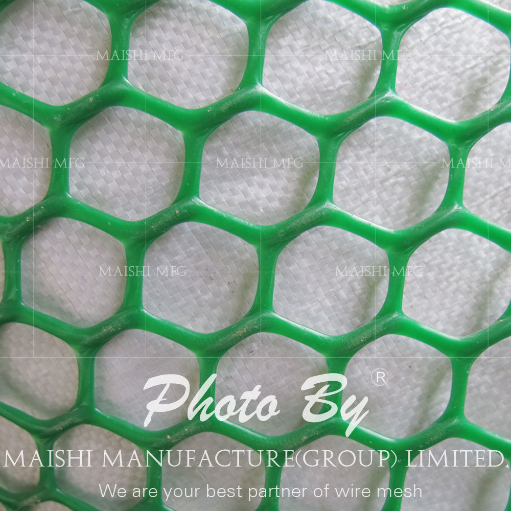Grass Reinforcement Plastic Net