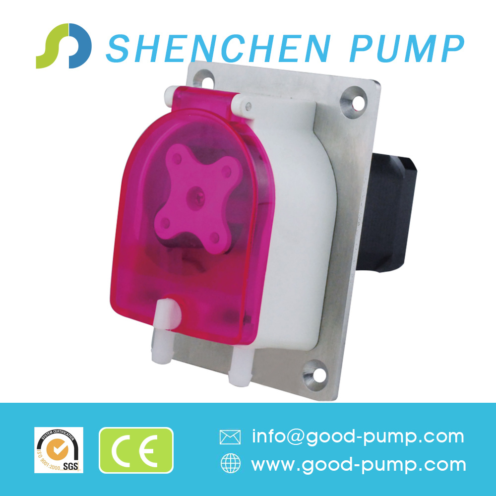 0.08-1000ml/Min AC Motor or Stepper Motor OEM Peristaltic Pump