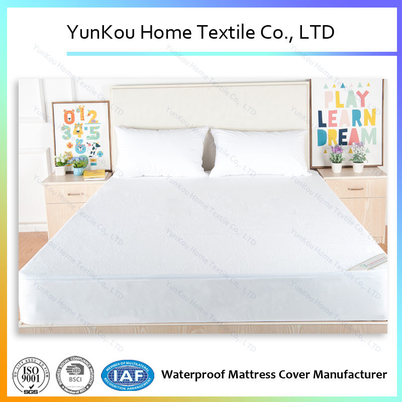 Premioum Zippered Cotton Bed Bug Proof Waterproof Mattress Encasement