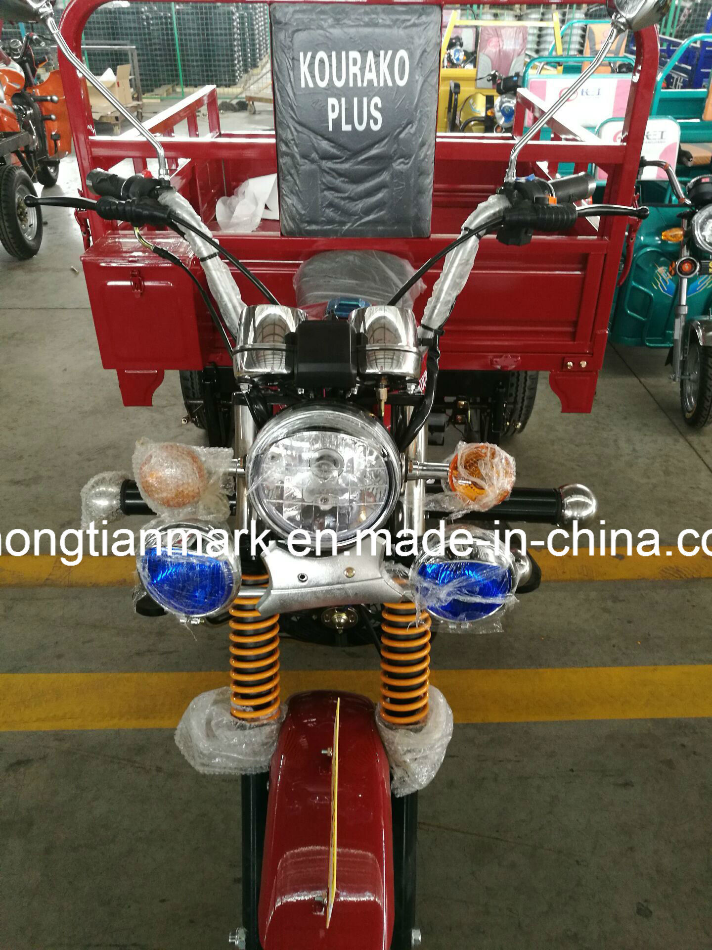 Tricycle for Passenger Tr200 Customizable