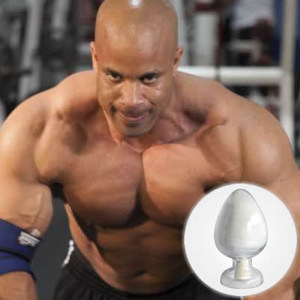 Testosterone Sustanon 250 Raw Anabolic Steroids Hormone Premixed Sustanon 250mg/Ml