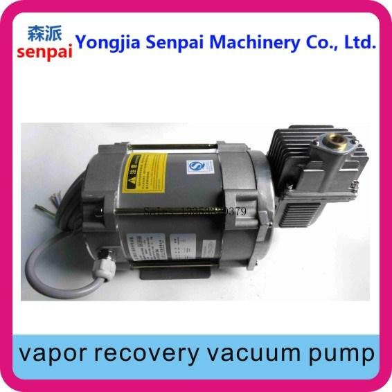 380V/220V Single-End Vapor Recovery Pump Vacuum Pump