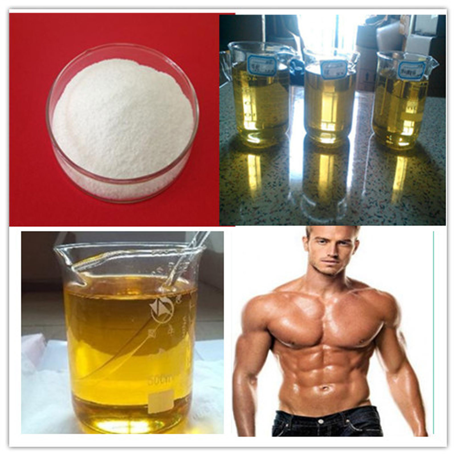 Primobolan Anabolic Steroid Powder Methenolone Acetate with 99% Purity