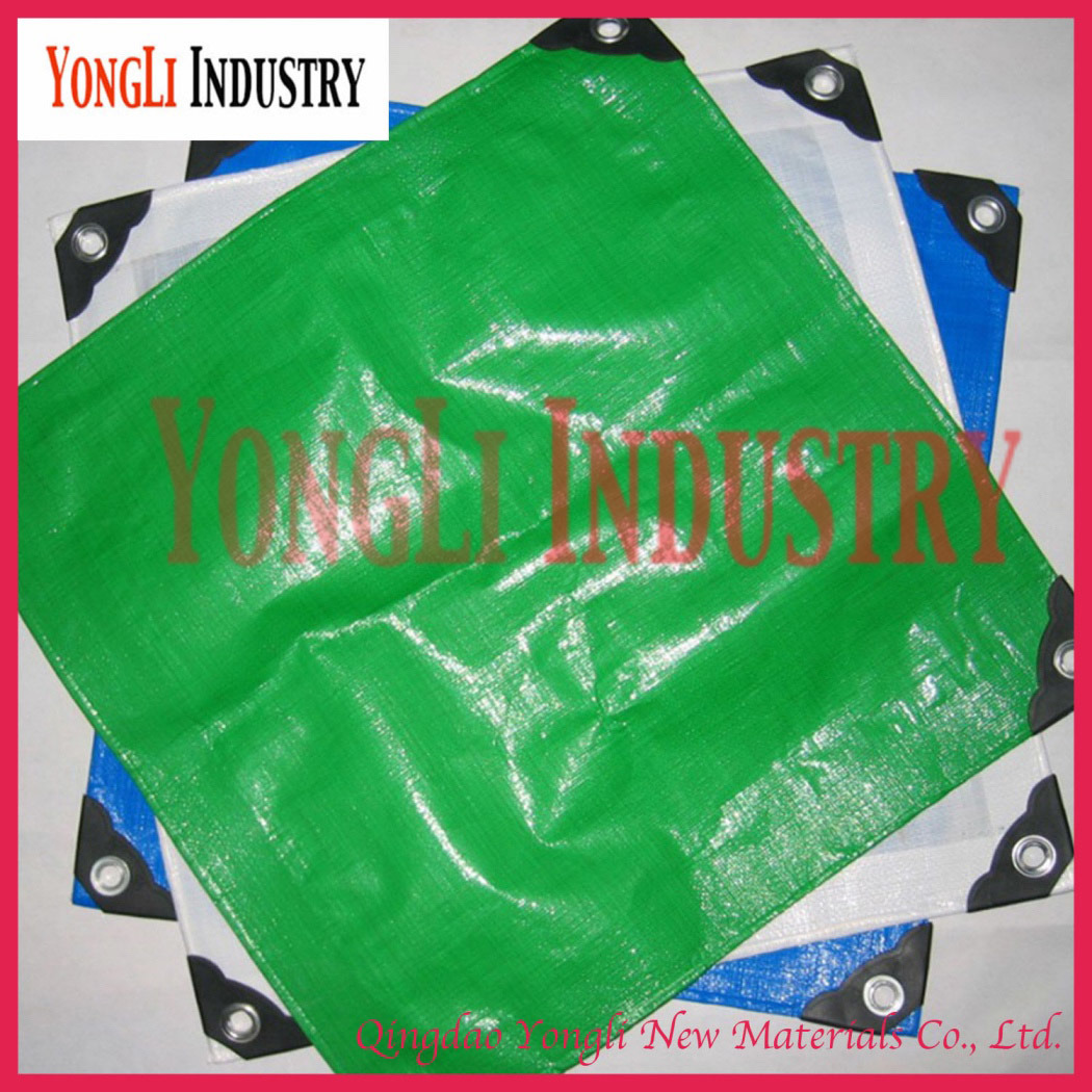 High Quality Korea PE Tarpaulin with UV Treated