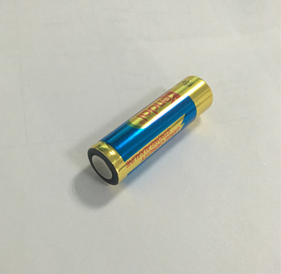 LR6 AA Alkaline Batteries