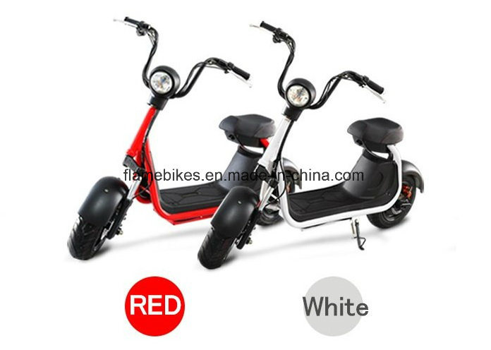 1000W Electric Scooter with 60V/20ah Lithium, F/R Shock