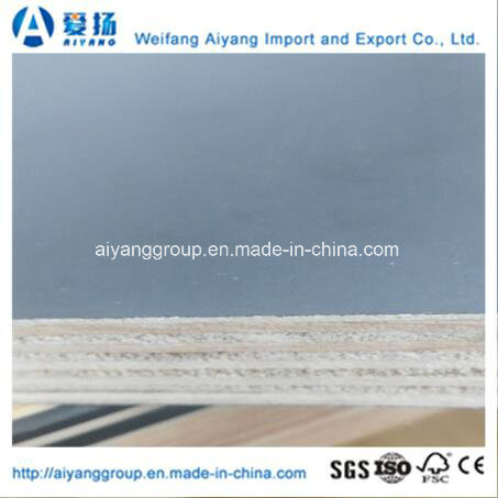 Film Faced Plywood with Competitive Price From China Factory