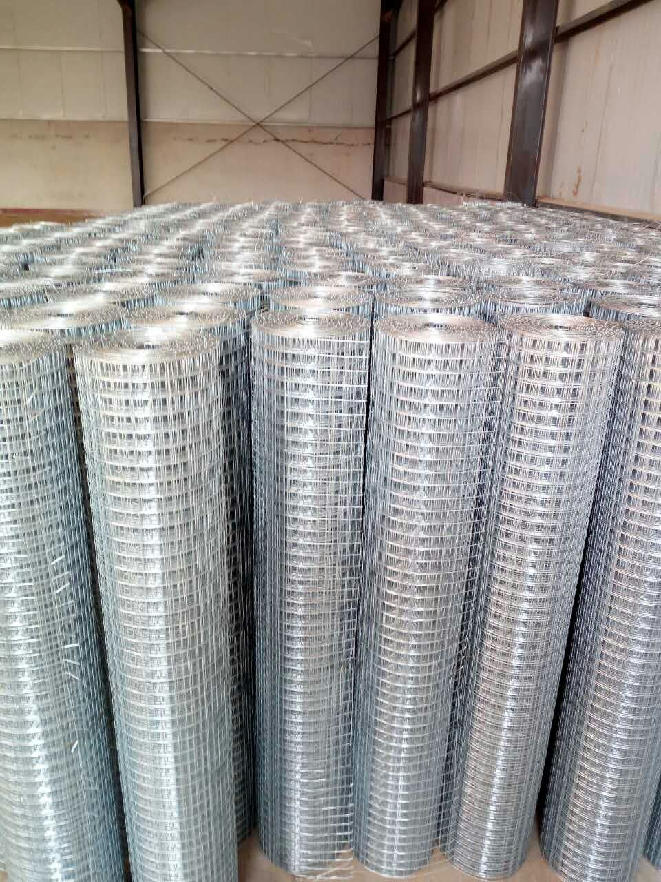 China Hot Dipped Galvanized Welded Wire Mesh - China PVC Coated ...