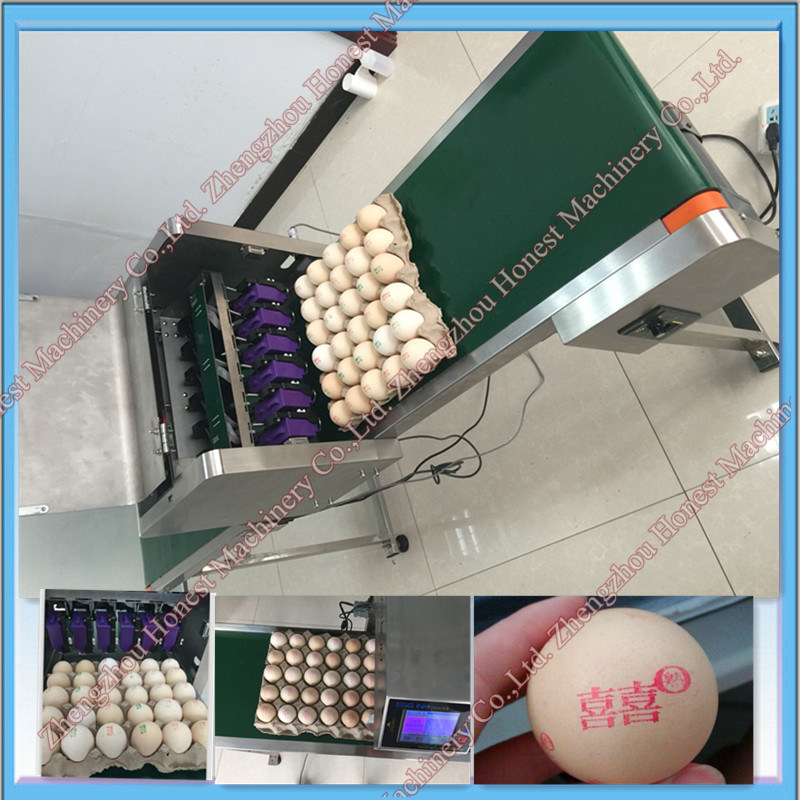 Automatic Egg Ink Jet Printing Machine