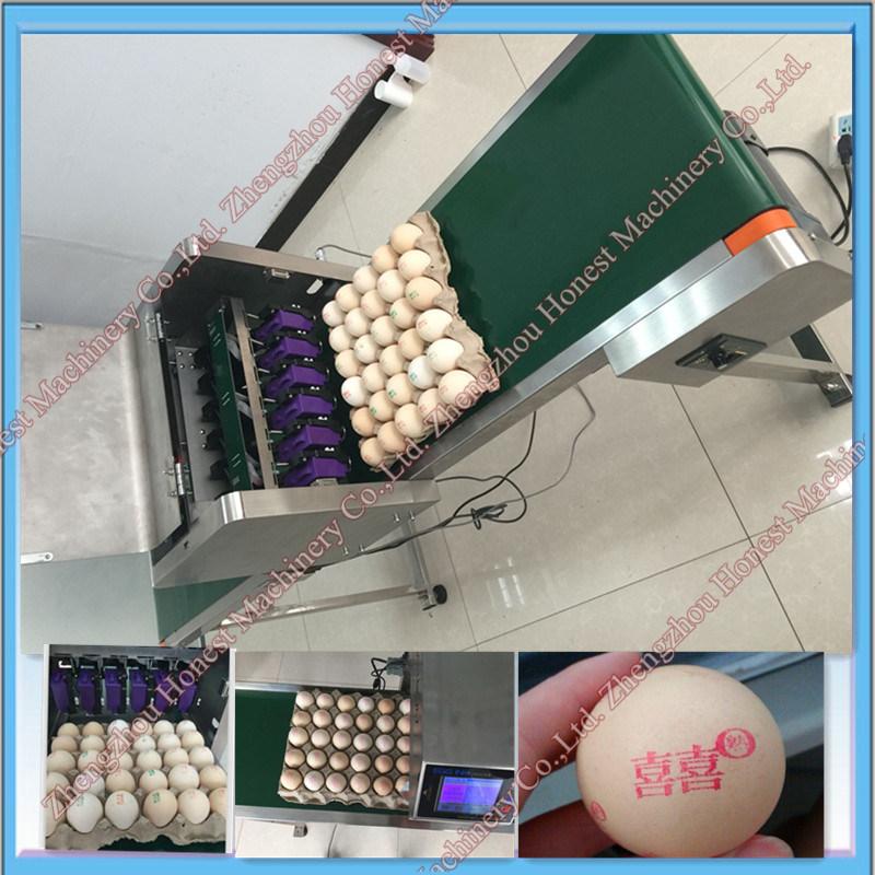 Automatic Egg Ink Jet Printing Machine