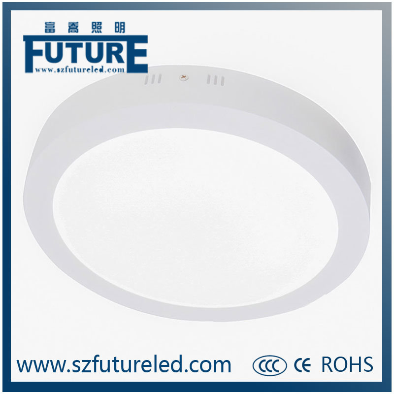 12W CE&RoHS Approeveled LED Panel Lamp