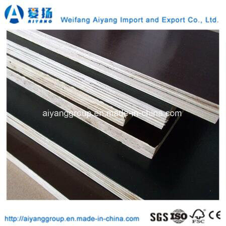 Filmfaced Plywood with Competitive Price From China Factory