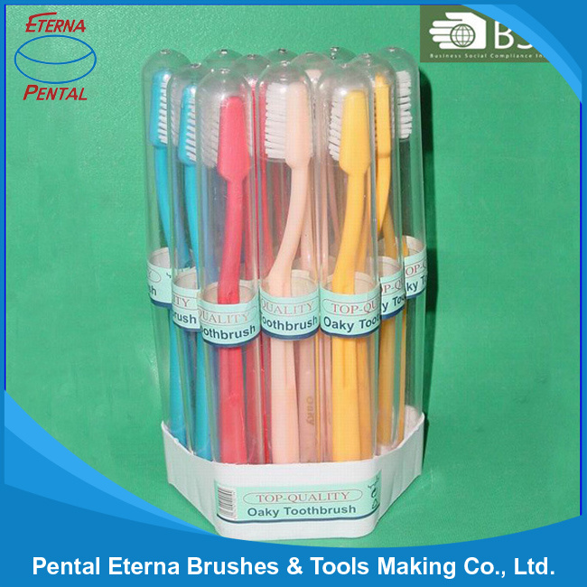 Made in China 12PCS Tooth Brush Set