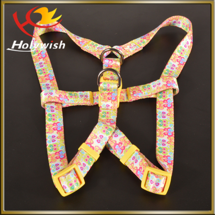New Custom Hands Free Dog Leash with Pet Collar