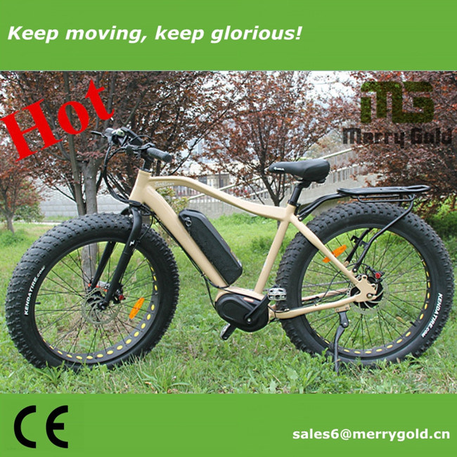 250W 36V Cool Electric Bicycle with MID Drive for Adults