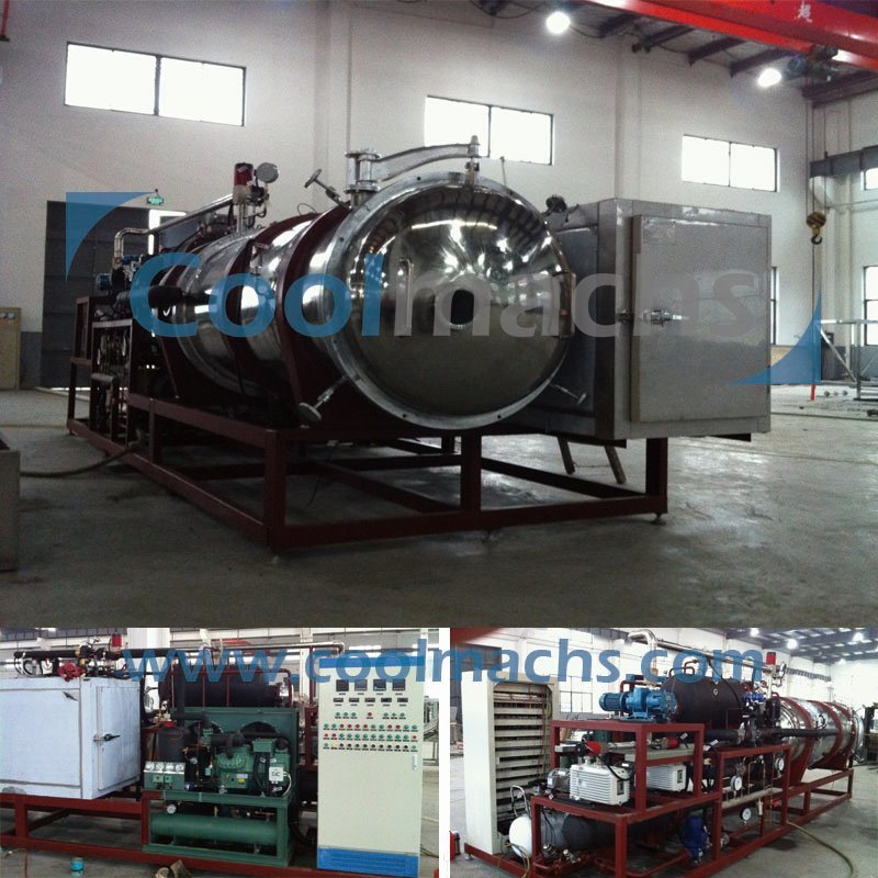Freeze Dryer Lyophilizer/Vacuum Freeze Drying Equipment