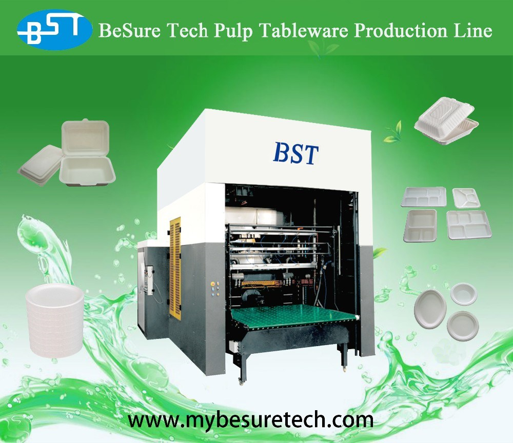 Pulp Molding Paper Plate Making Machine (TW10000)