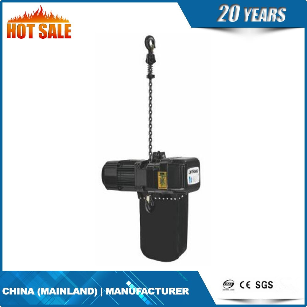 Electric Stage Hoist with Forging Hook