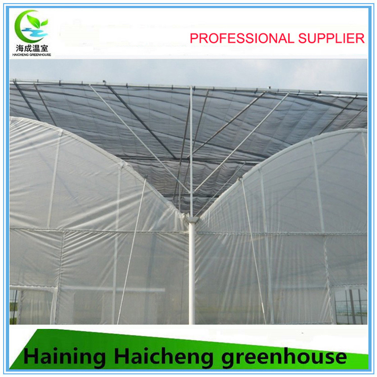 Multi Span Agriculture Plastic Film Vegetable Green House